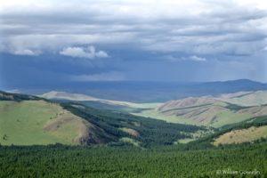 Mongolie, steppe
