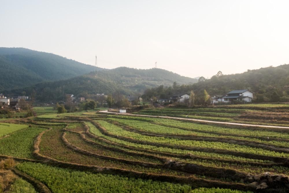 Retour de Chine 2019, par Béatrice